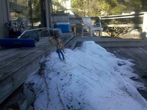 Woody on top of the snow bank on the back porch