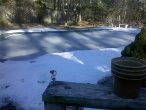 Woody checking out the melting on the pool cover (no leaks this year)